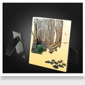 Picture for category Photo Panel (easel)